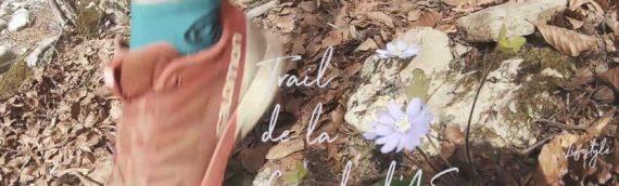 Teaser – Trail de la Cascade d'Ars